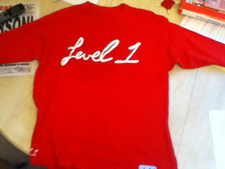 level1 1