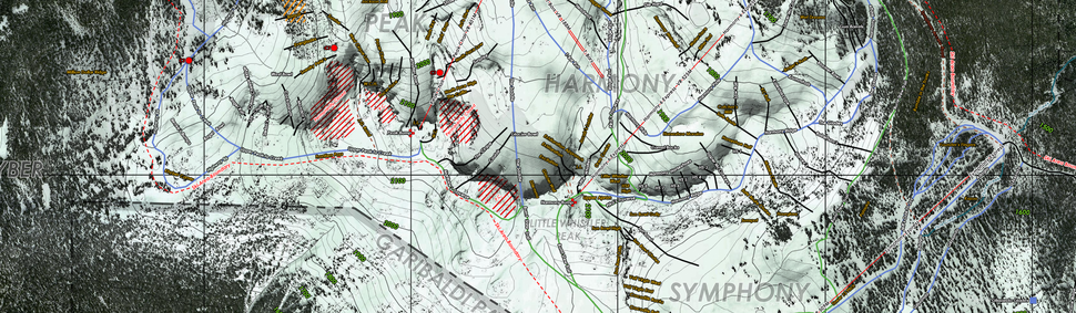 Whistler Topo/Satellite Run Map