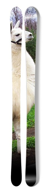 Llama Skis (NS/J)