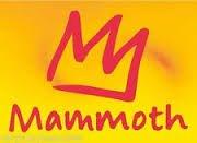 Mammoth Mountain Big Mountain Team