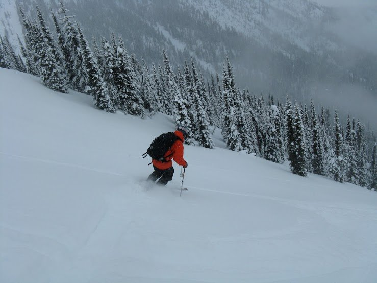 Pow skiing in BC