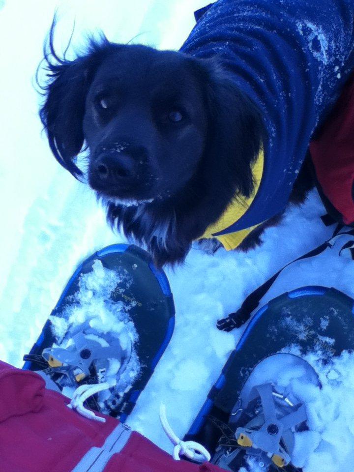 Shanti likes to ski