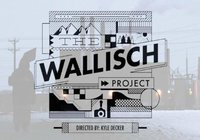 The Wallisch Project Q&A