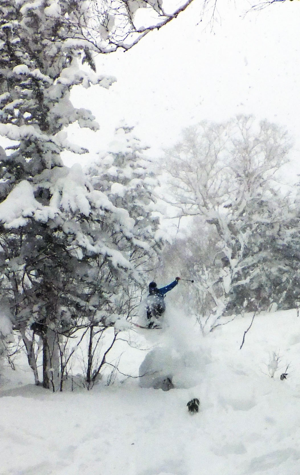 Back country jump