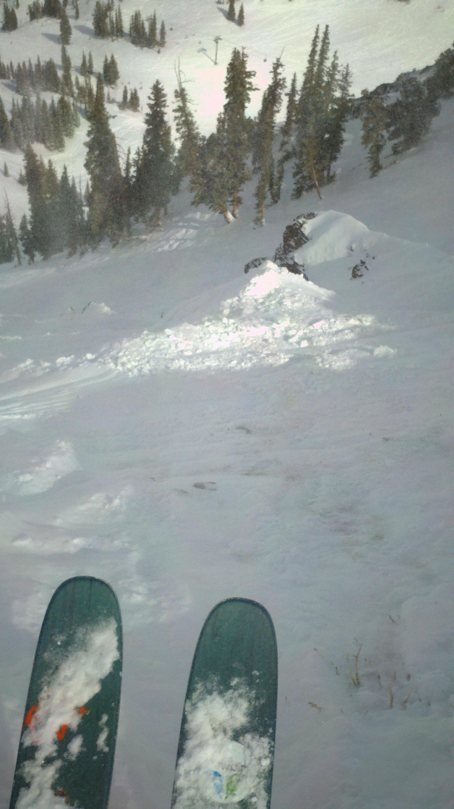 would you ski this, bro?