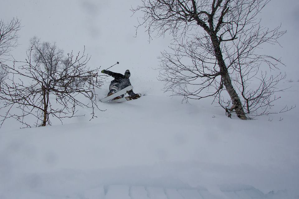 Powder Shot