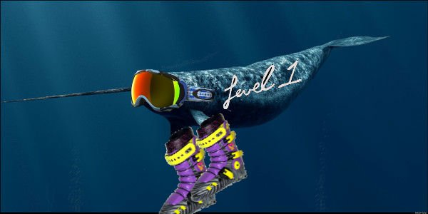 Gnarwhal