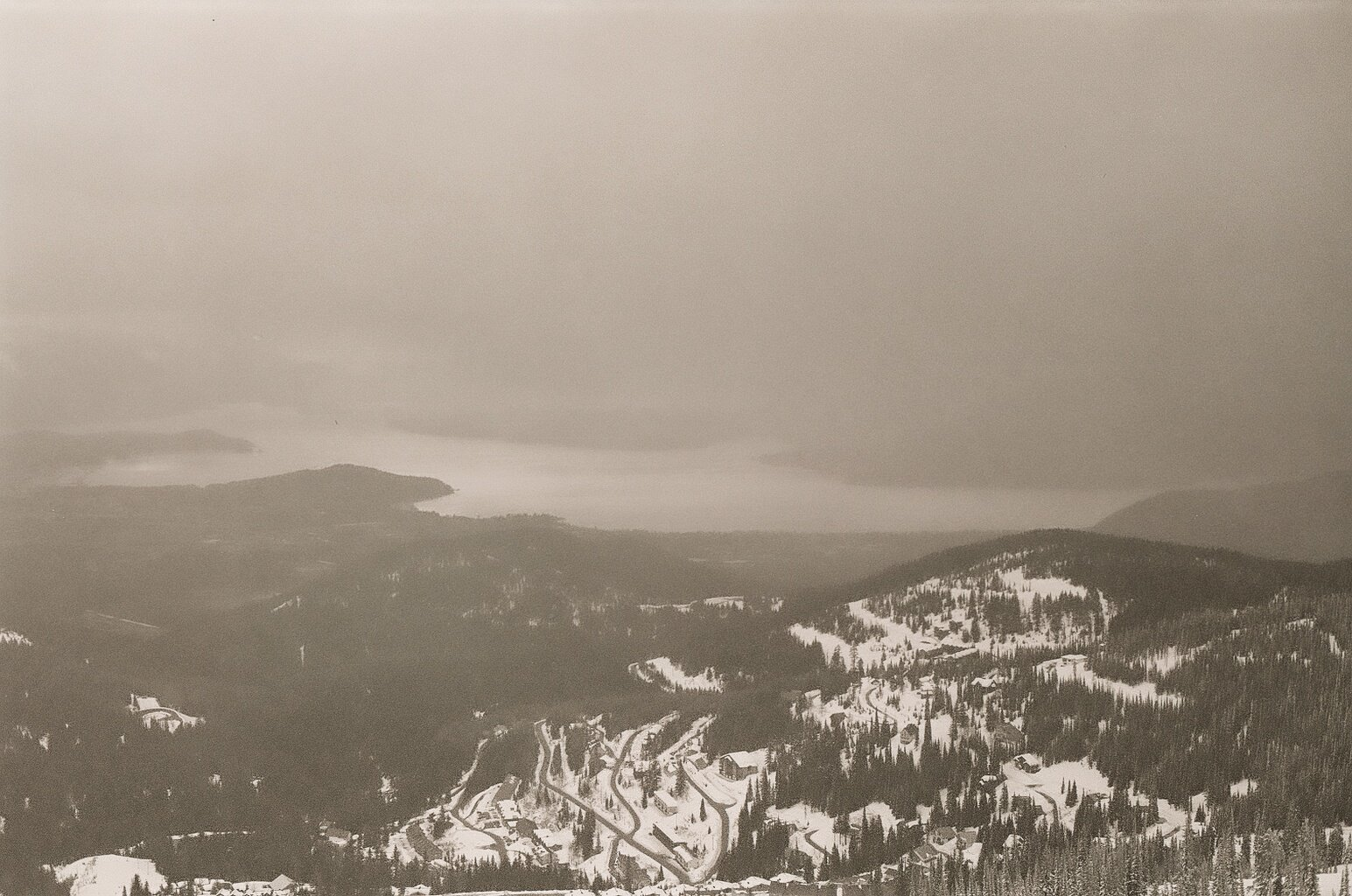 Foggy Lakeview