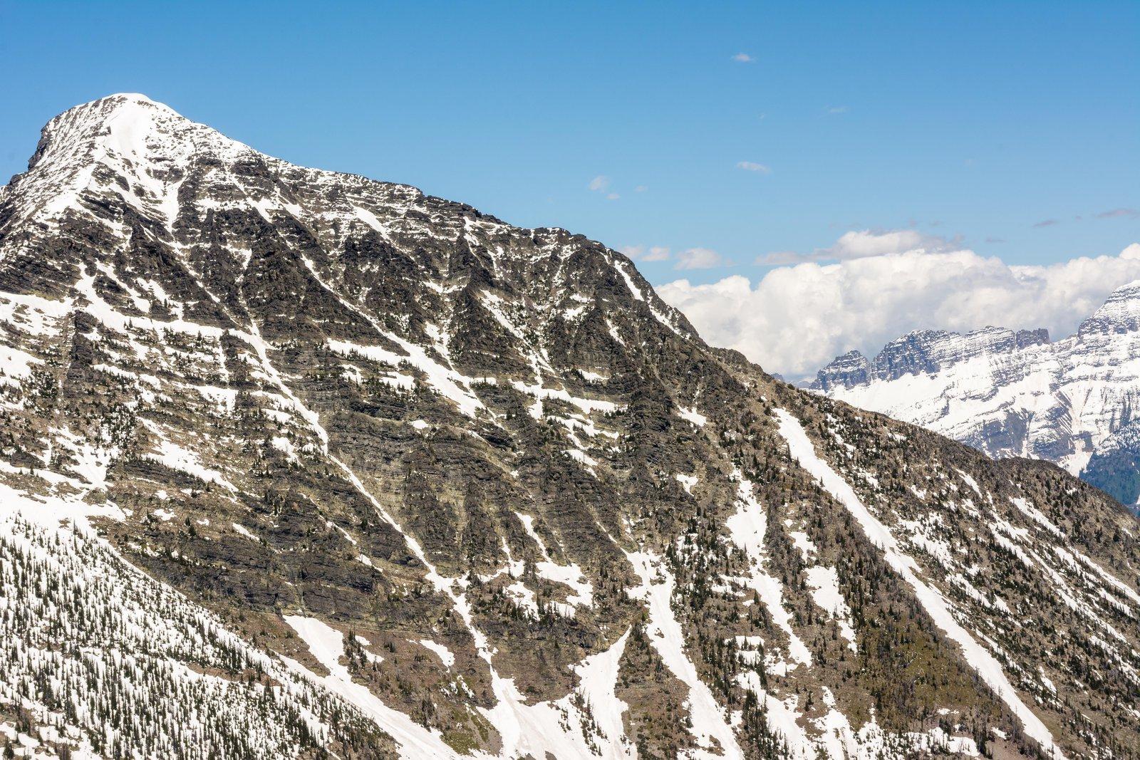 Sneaky Peaks