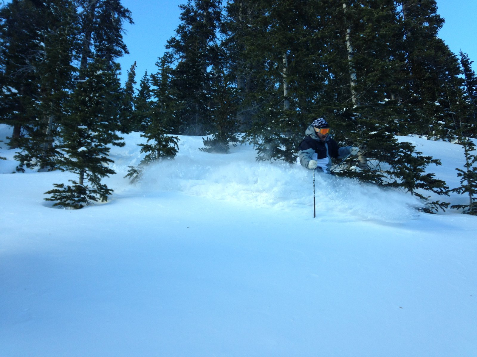 Breck pow shot
