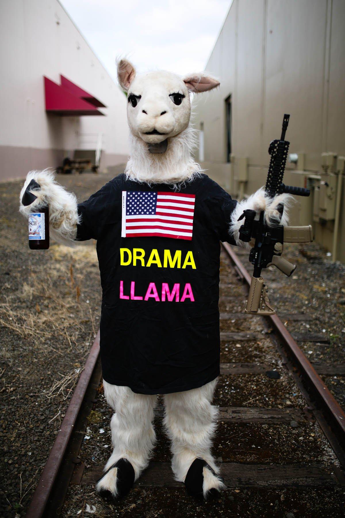 Drama Llama in the USA
