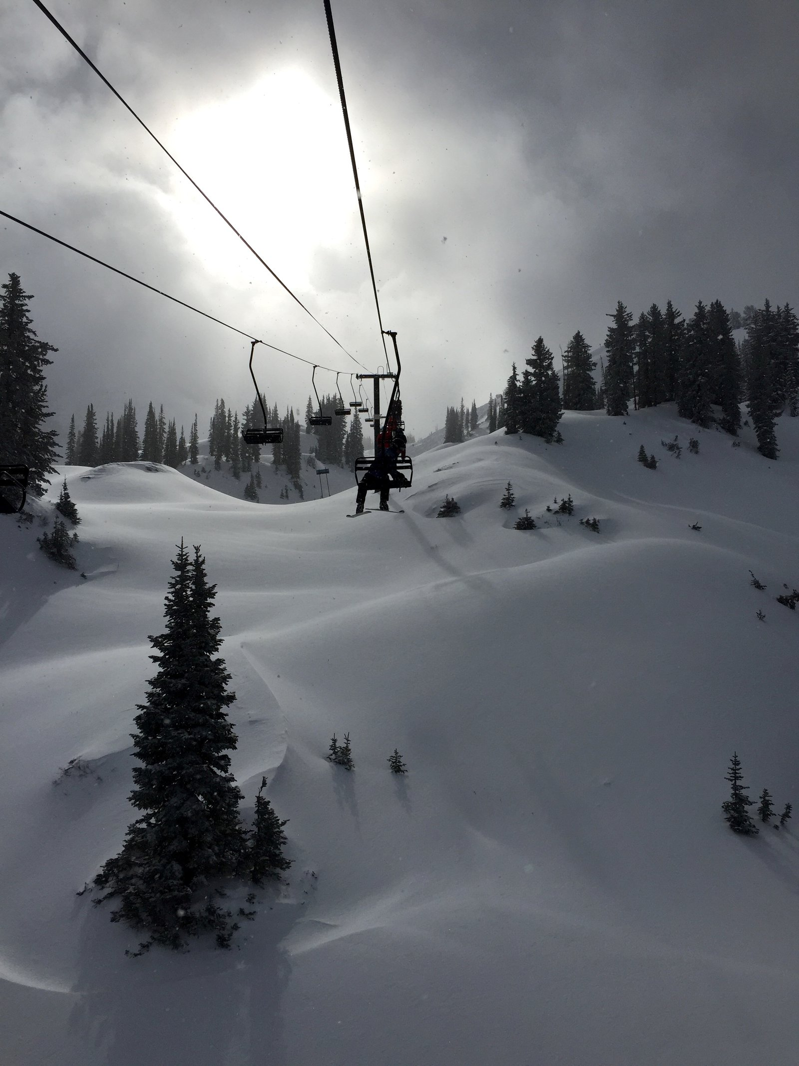 Alta was unreal yesterday