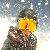 shepux profile picture