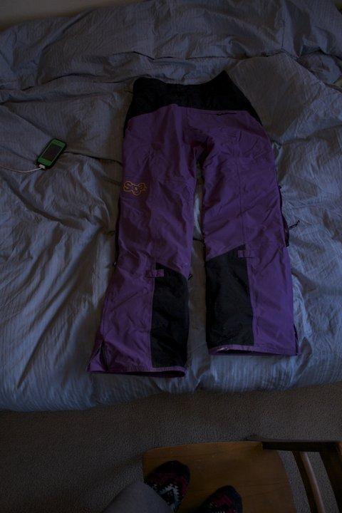 L Purple Saga Pants