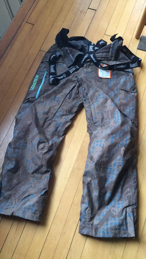 salomon ski pants.jpg