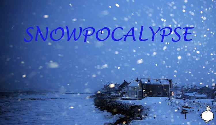 Snowpocalypse: Boston Avalanches