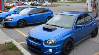 SUPPORT MY SUBARU ADDICTION sale  Huck To TREE  - Sell and