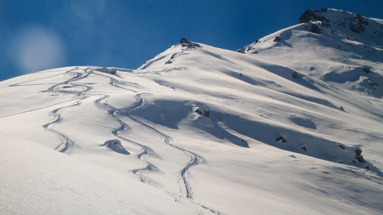 Skiing Pow in India - Kashmiri Gold!