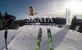Skata Sweden - 1420