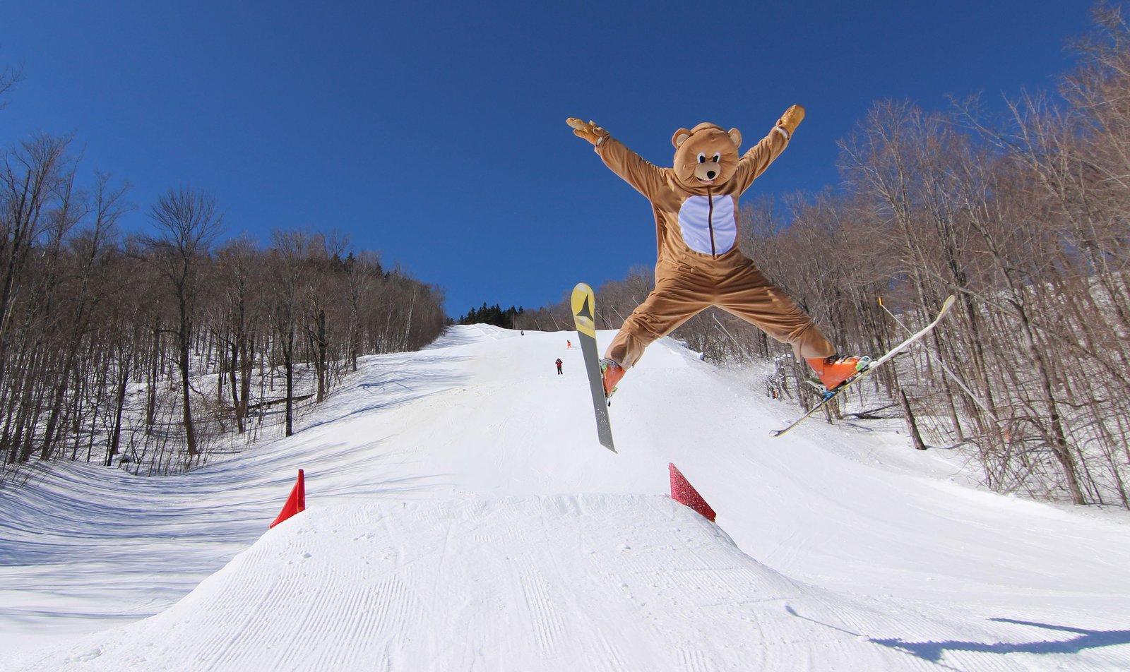 Bear - Gaper Day