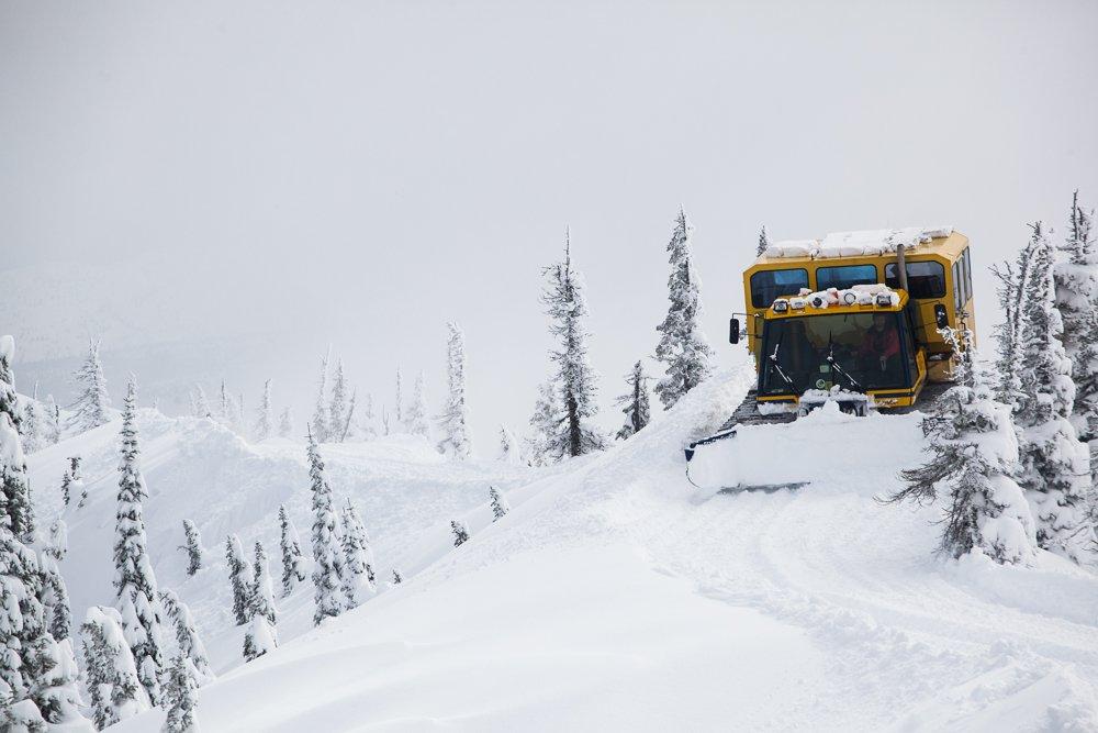 Revision Skis Spring Break: Fernie Catskiing