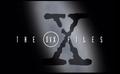 DVX Files - Gangland