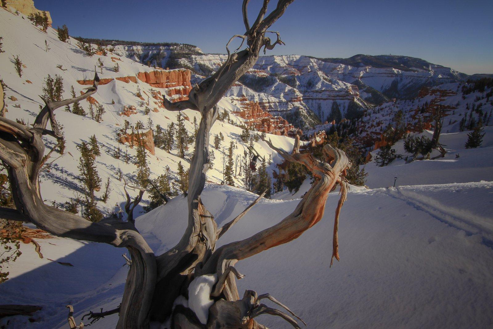 Southern Utah Backflip
