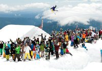 Newschoolers Official Summer Camp Guide