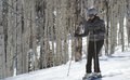 Michelle Obama's $57,000+ Ski Weekend