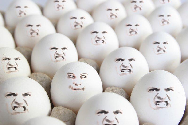 Toby Eggs