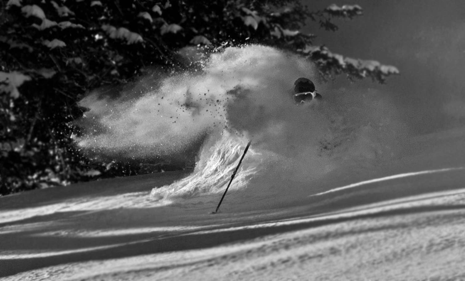 Bo gettin' Pitted