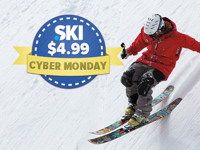 $4.99 Cyber Monday .SKI Domains
