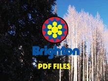 Brighton PDF Files Episode 1
