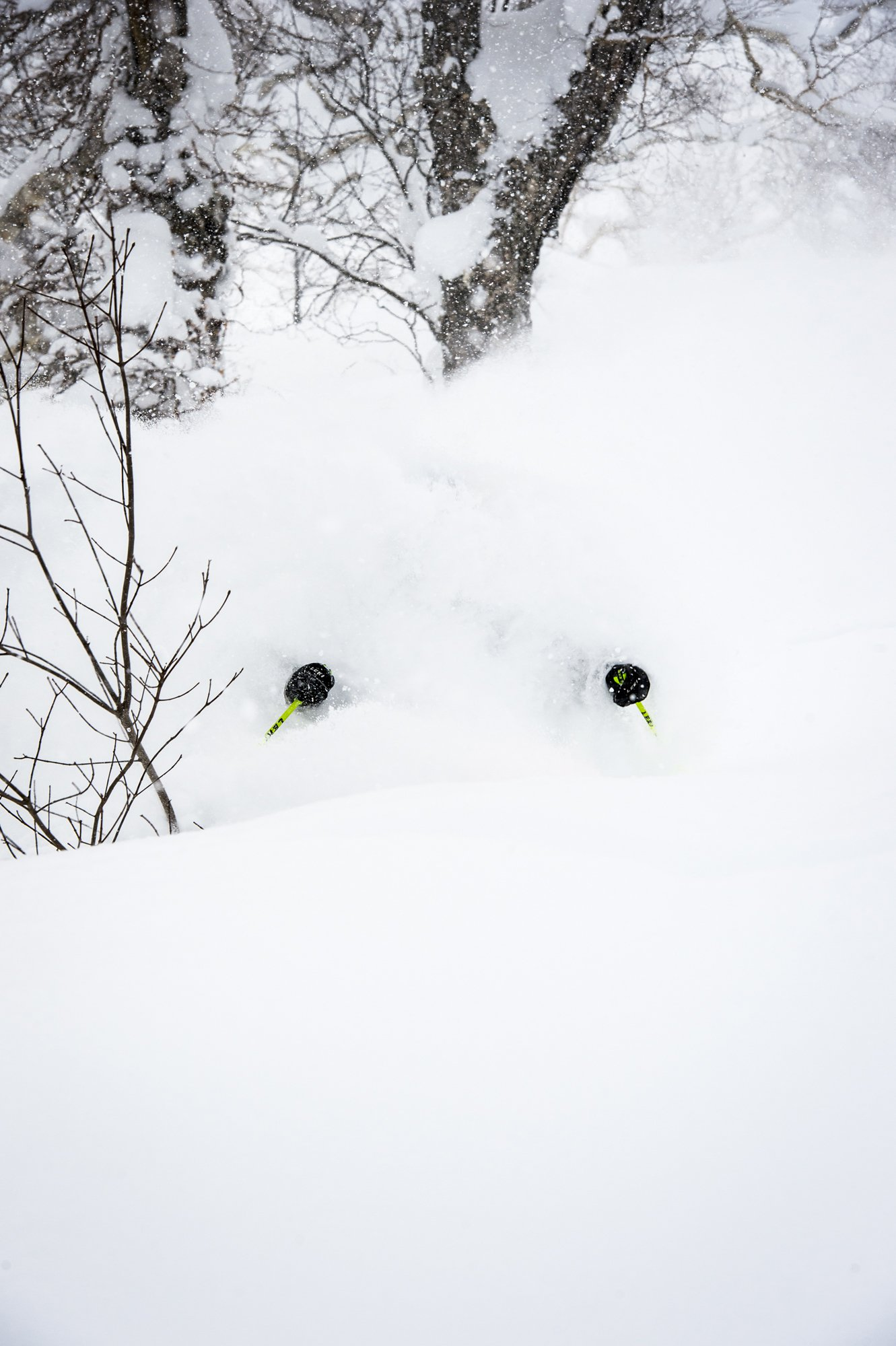 Bottomless Powder?