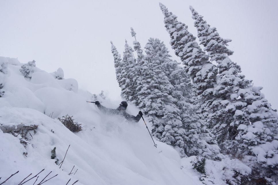 Early season steeps