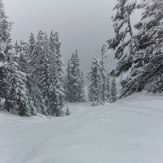 Snowy day @VD chutes