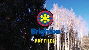 Brighton PDF Files Episode 5