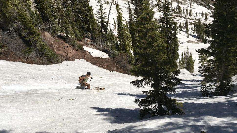 June In Montana