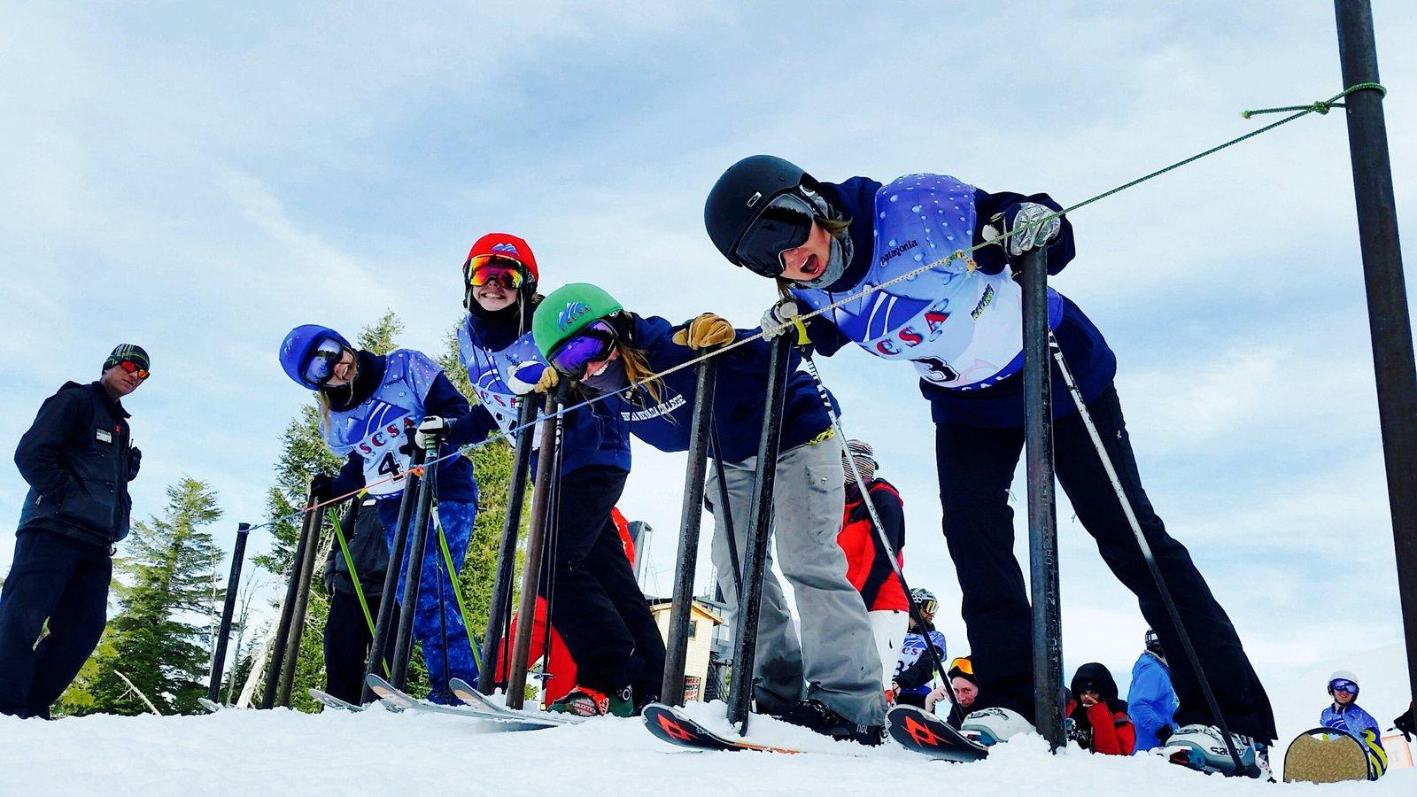 Ski X