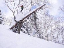 Freeride Skiing in Japan 15-16season
