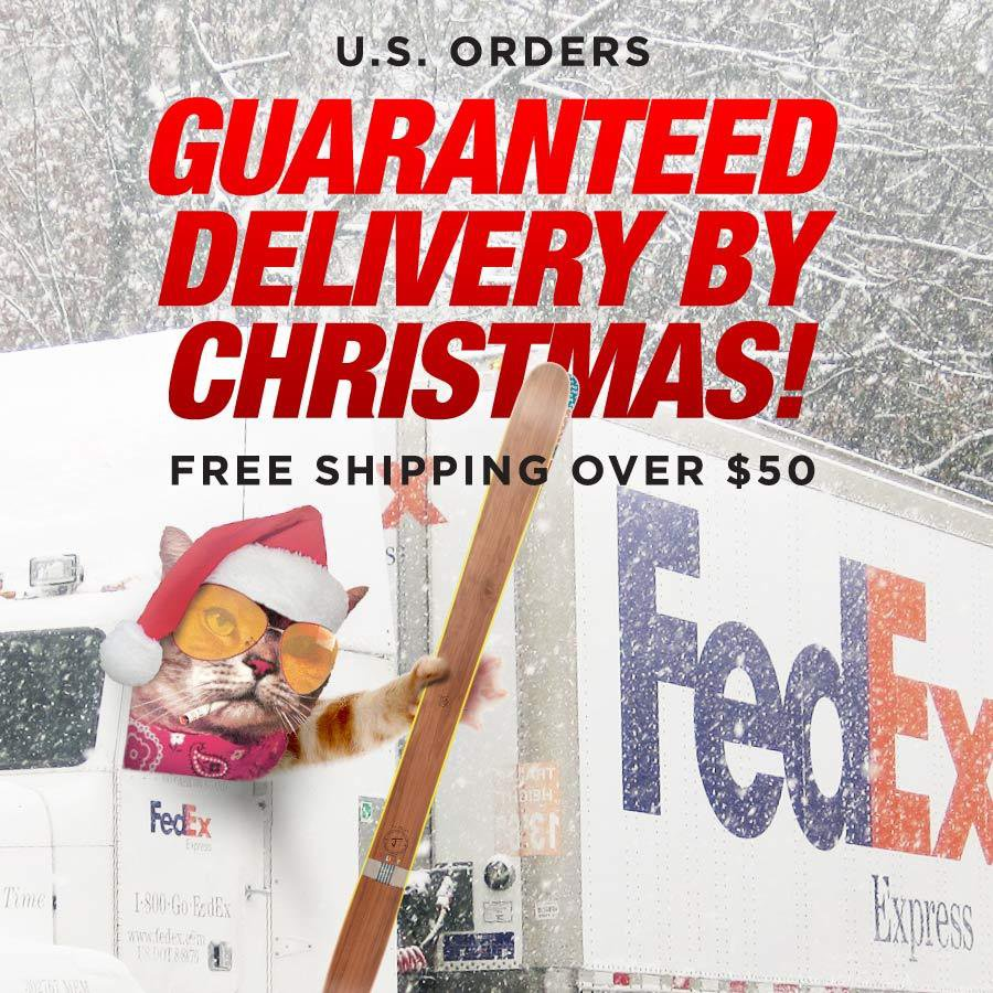 Guaranteed Delivery by Christmas!!!!