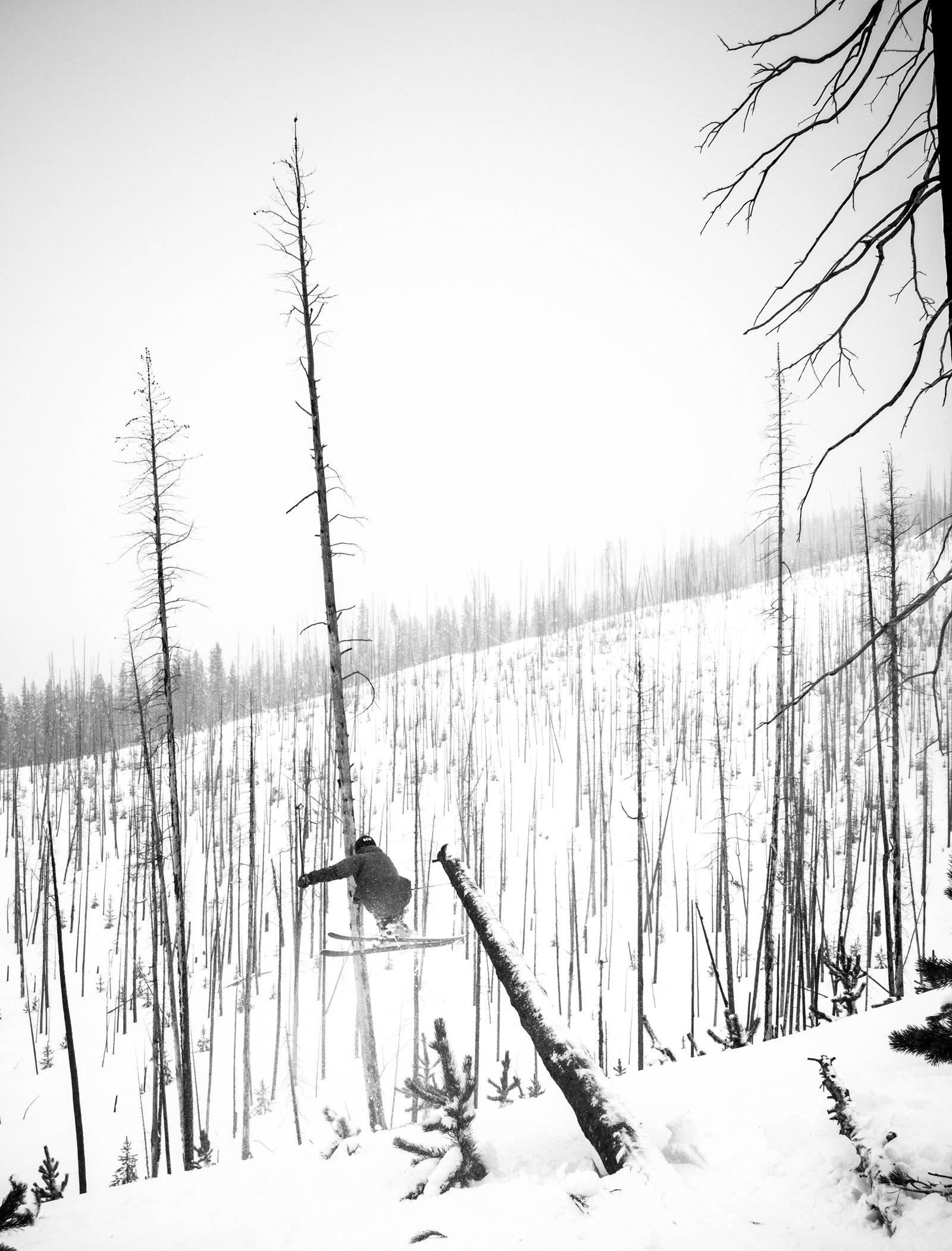 Montana Pole Jam