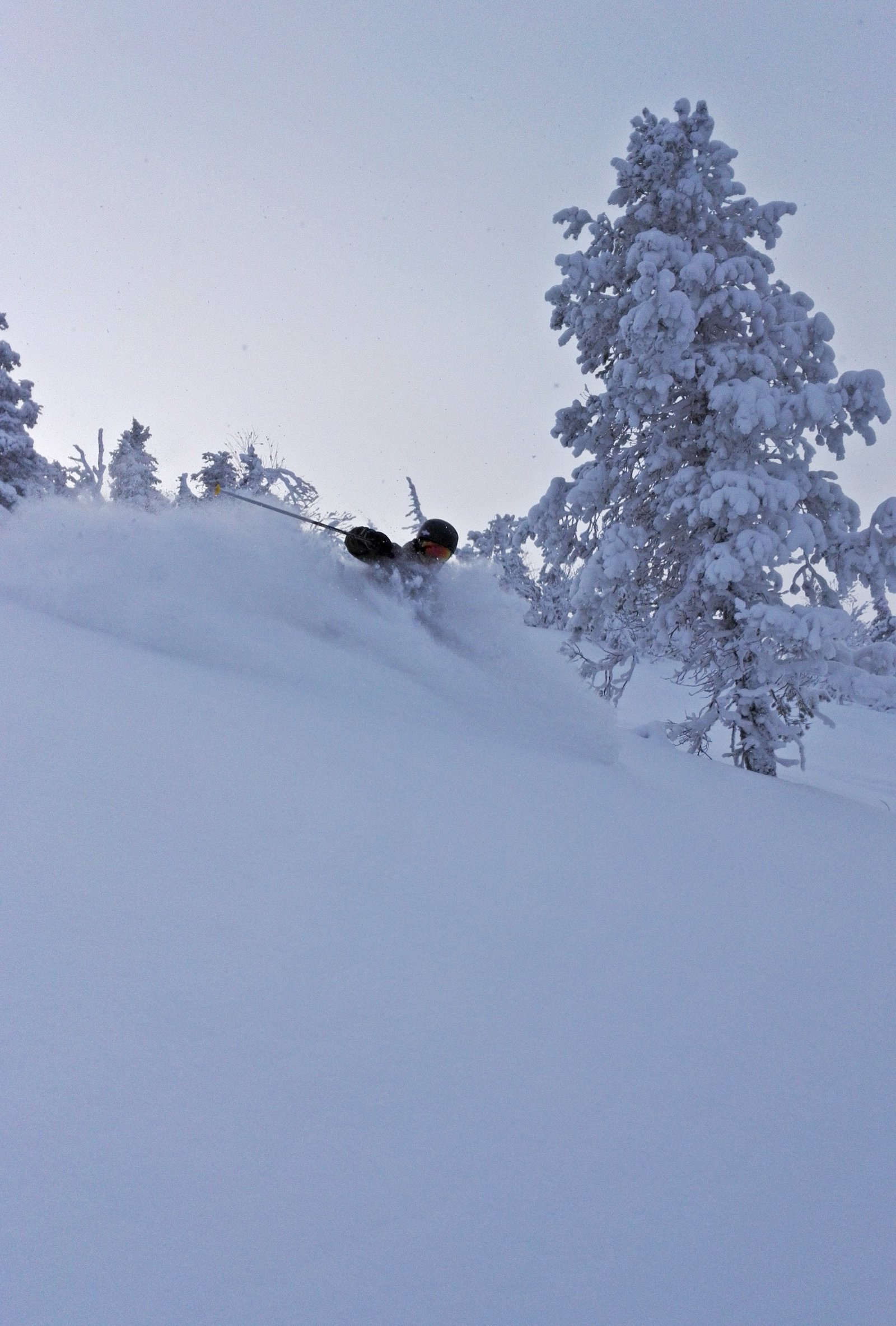 Powder at Ruka