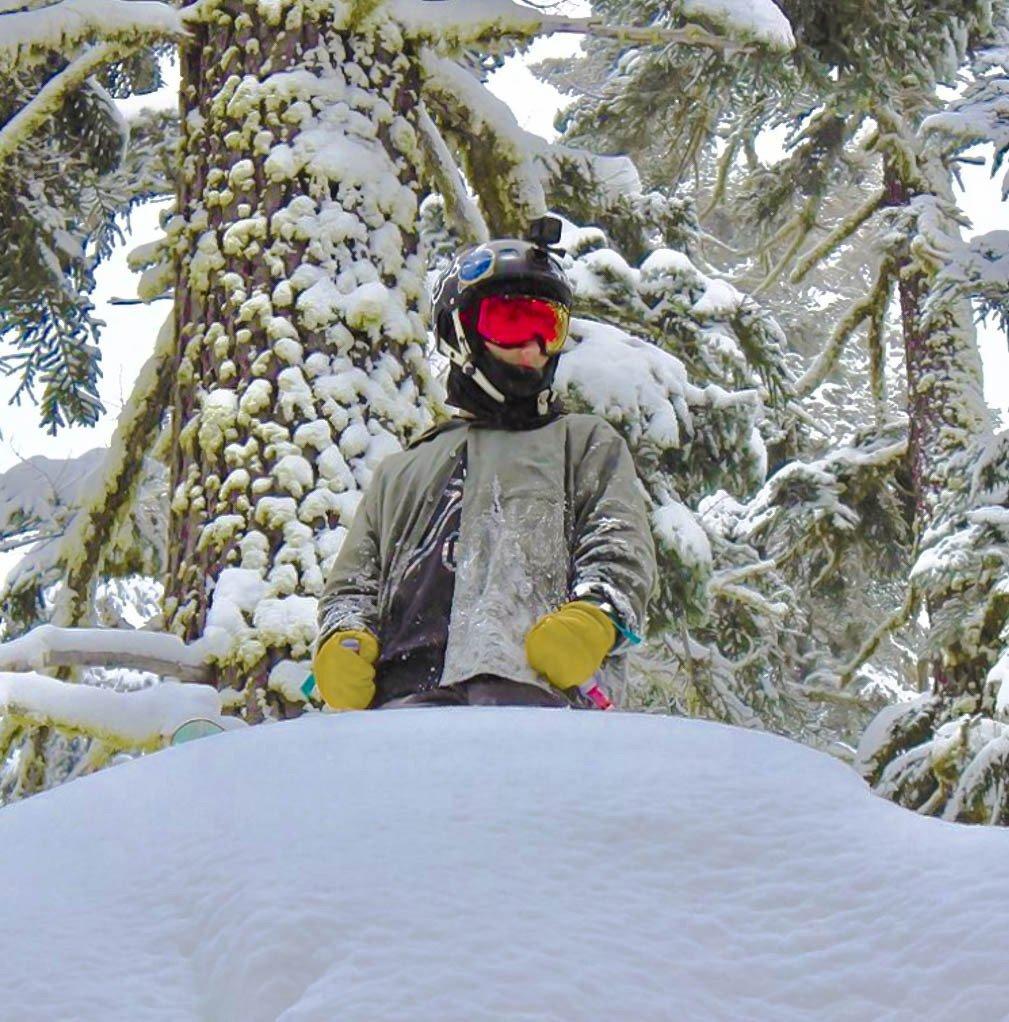 Looking Through Sierra-at-Tahoe trees