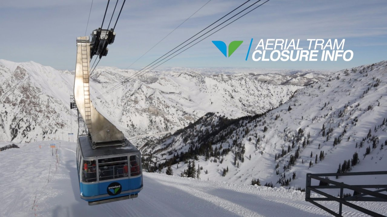 Snowbird To Build Terrain Park, Shut Down Tram - Radical Radish