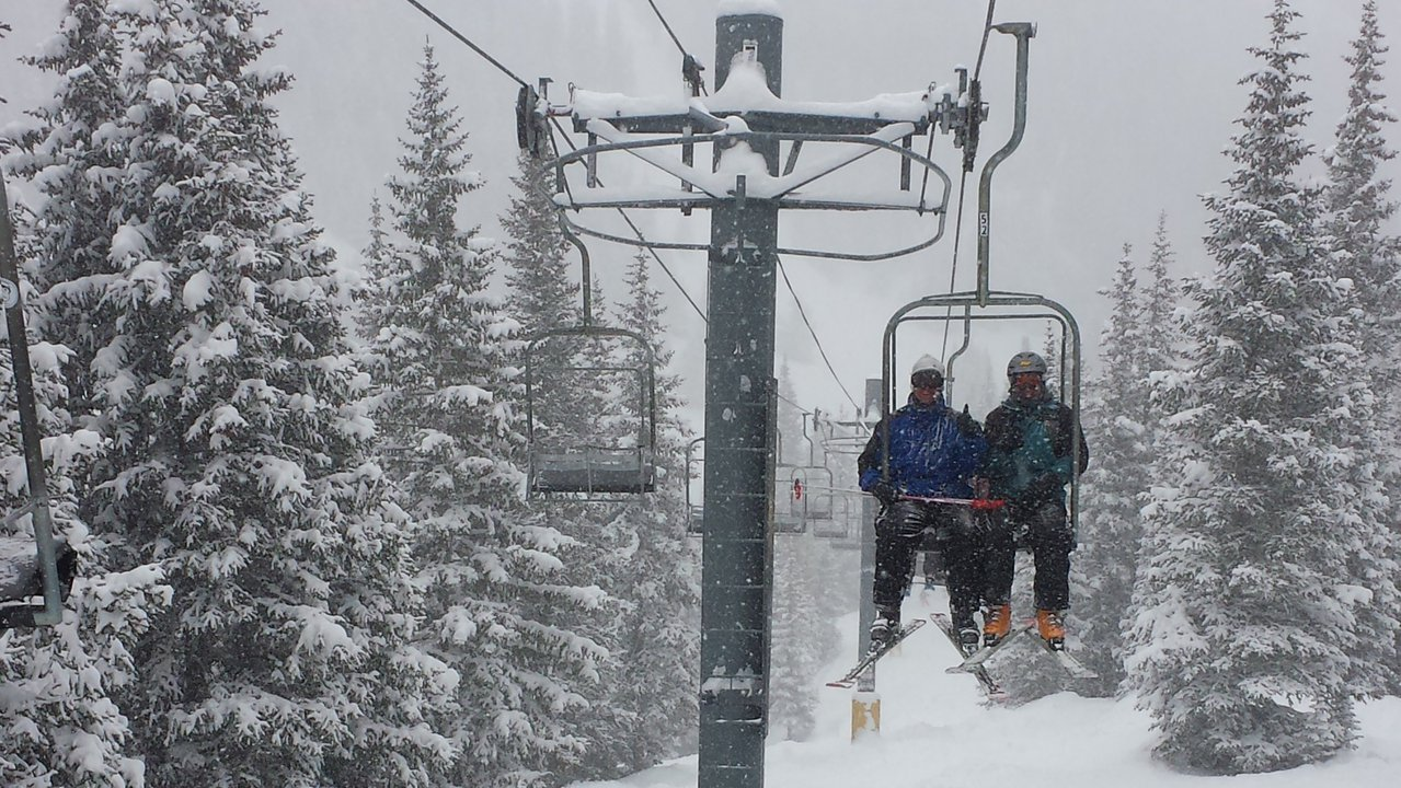 Why You Need To Buy The Mountain Collective This Year