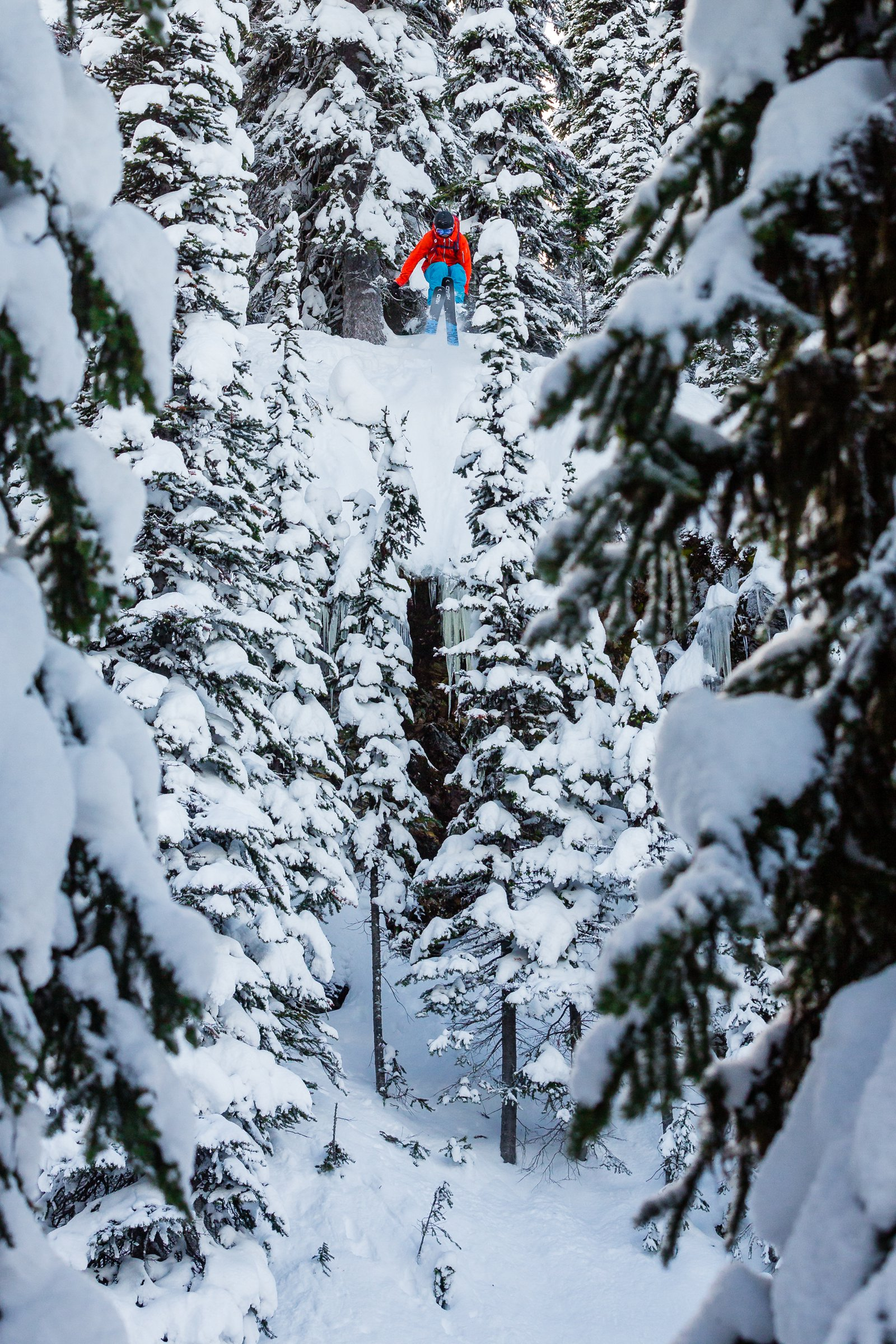 Revelstoke Tree Gap