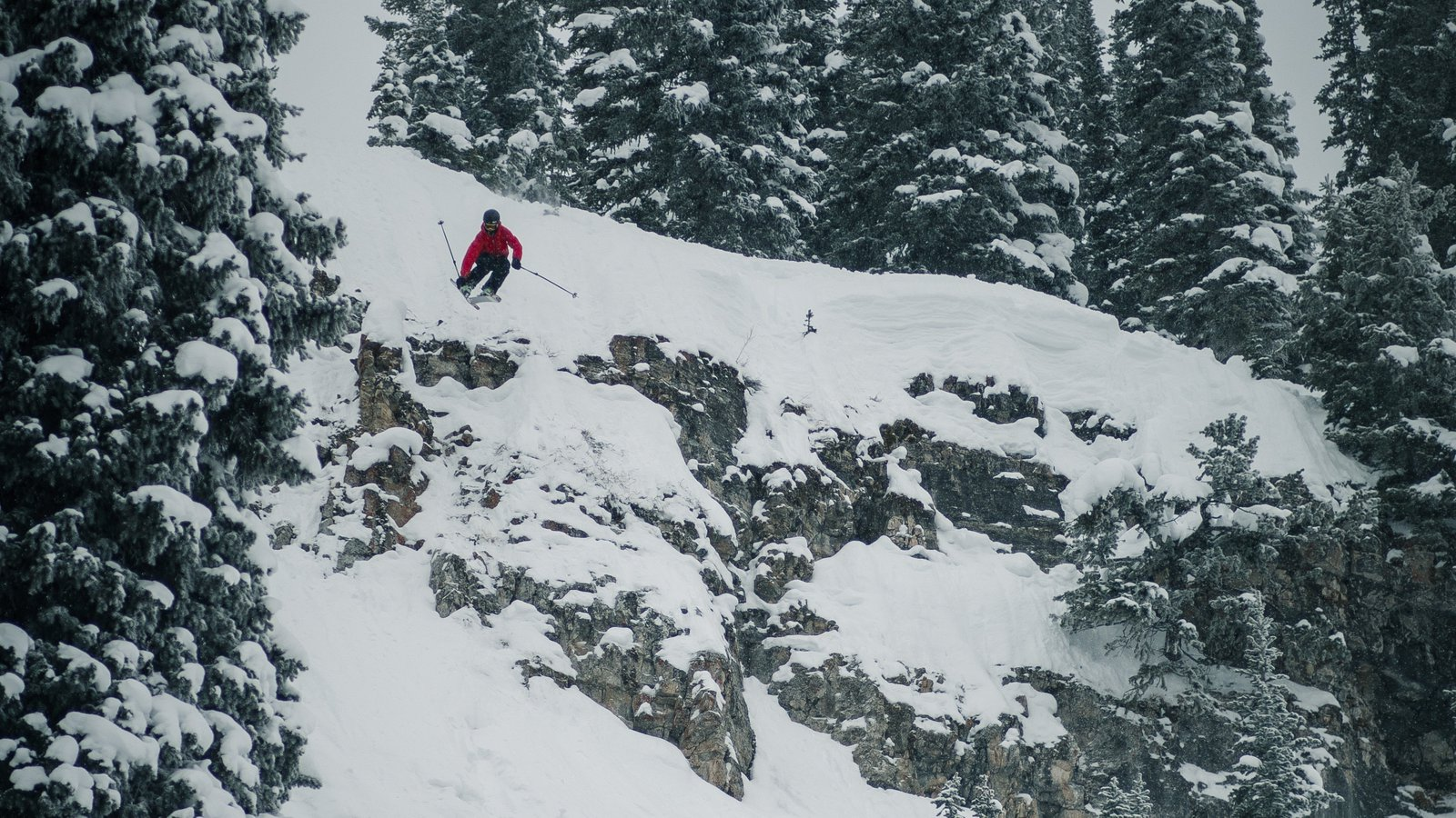 Targhee Goodies