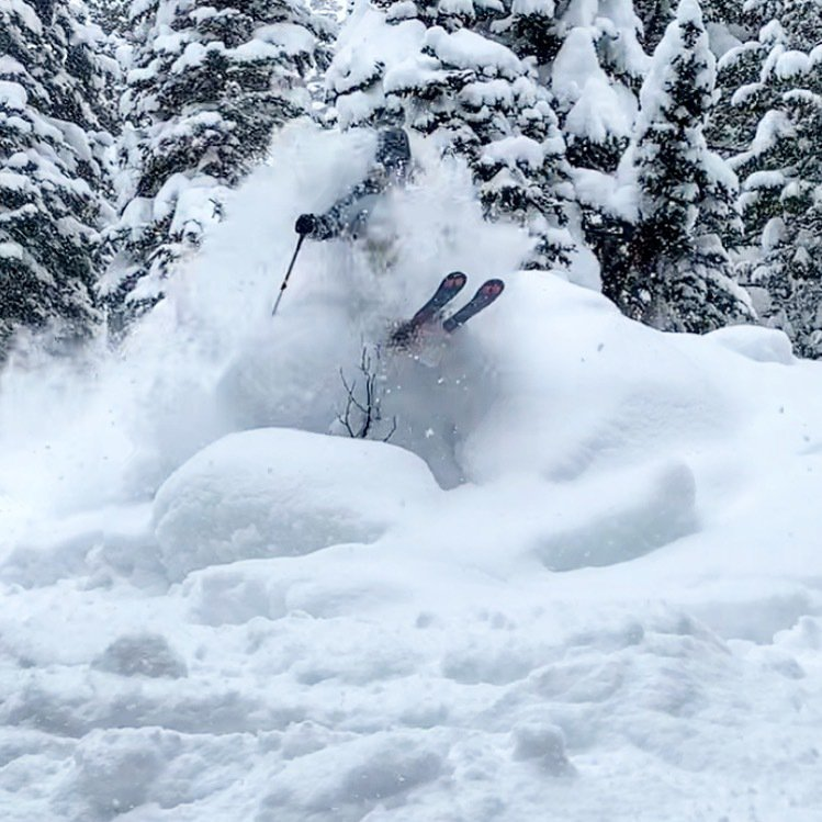 Jackson hole 15 inch over night