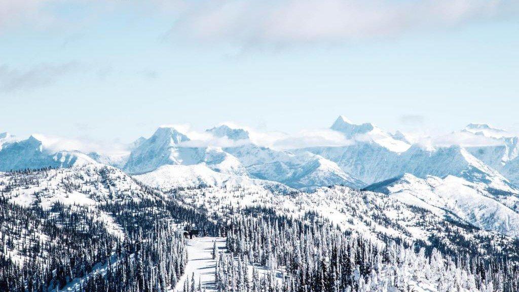 Skiing Green